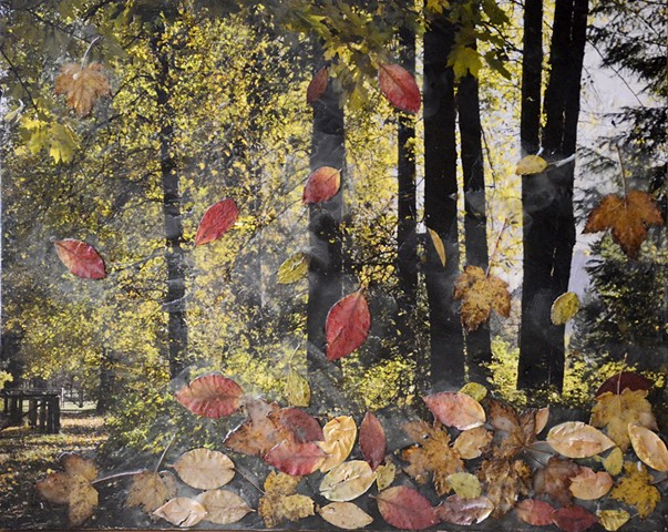mixed media, encaustic, fall, leaves, autmn