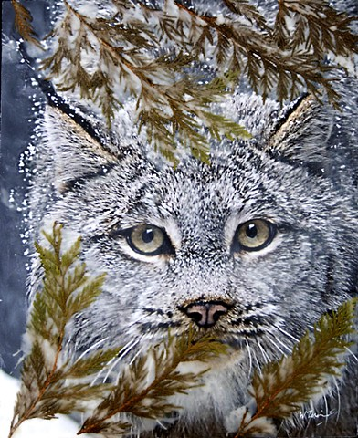 Lynx, Wildlife, Nature , encaustics