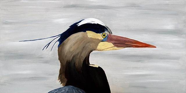 Portrait of a Great Blue Heron, Ardea herodias