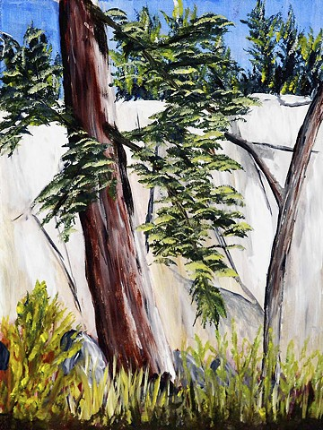 Nature, rock wall, rock, trees, painting acrylic