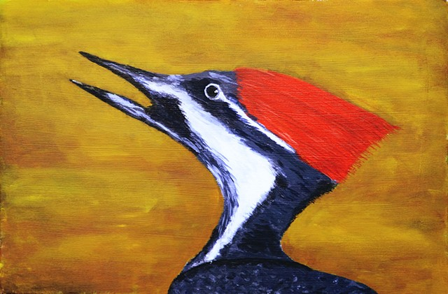 nature, painting, bird, woodpecker, pileated
