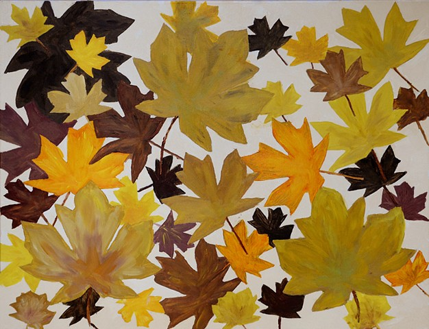 fall, autumn, maple leafs,