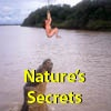 Nature's Secrets  -  Photographs