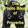 The Photo Book of Proverbs