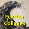Feather Collages