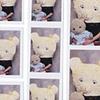 Family Portrait: Mama Bear and Baby Bear