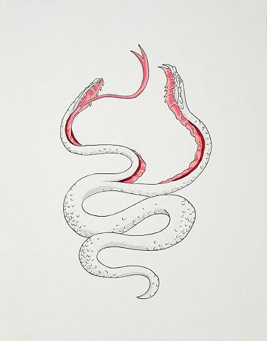 Split Snake