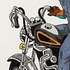 The Denim Rider