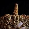 Amish Gourd