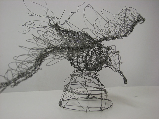 3-D Design, Wire Project