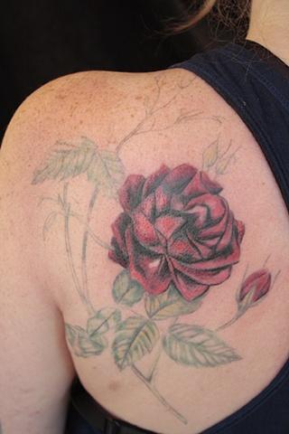 Dana's Rose