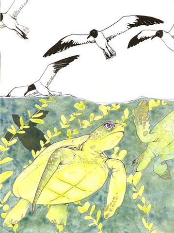 World View Magazine: Sea Turtles