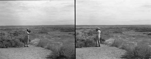Diptych  Petrified Forest National Park  Arizona
