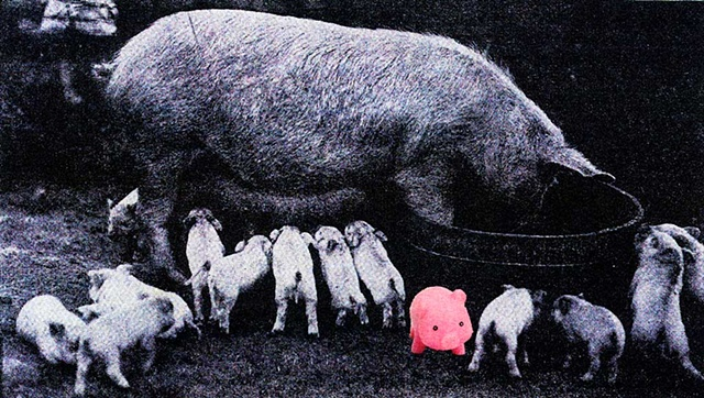 Pop Surrealism mixed media collage image. Litter of Pigs.