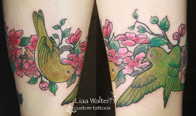 After, green birds and cherry blossoms