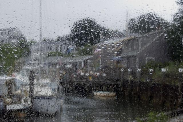 rainy day summer image