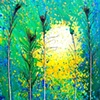"Laurie Miller ""Light of the Woods"""