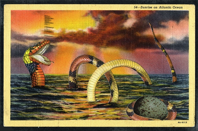 The Brazen Sea Serpent
