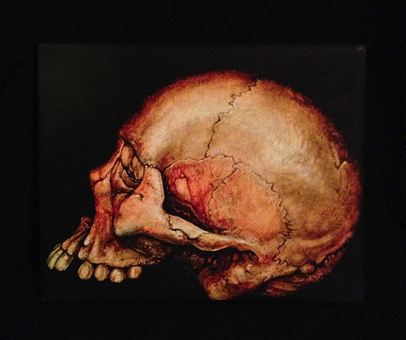 old orange skull 8by10 canvas giclee