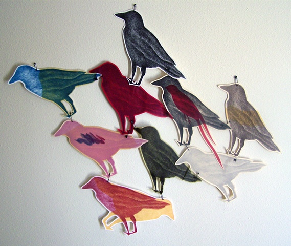 Bird Accumulation
