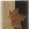 Autumn Glory  folder
