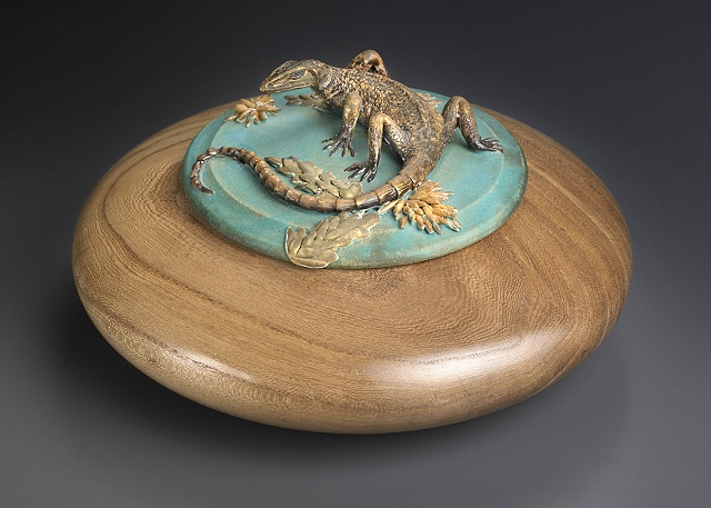 Plated Lizard on English Elm