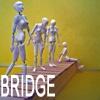 Understories I: Bridge