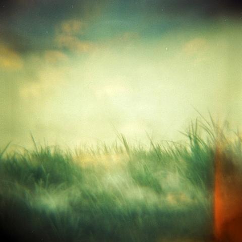 Wetland Series 1