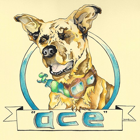 dog portrait ACE
