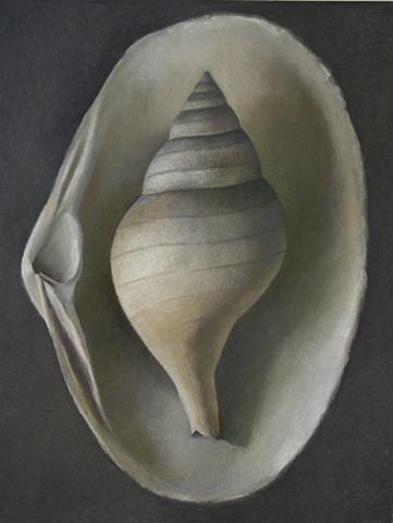 Tulipsea