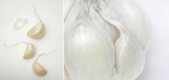Slowfood Project, Garlic