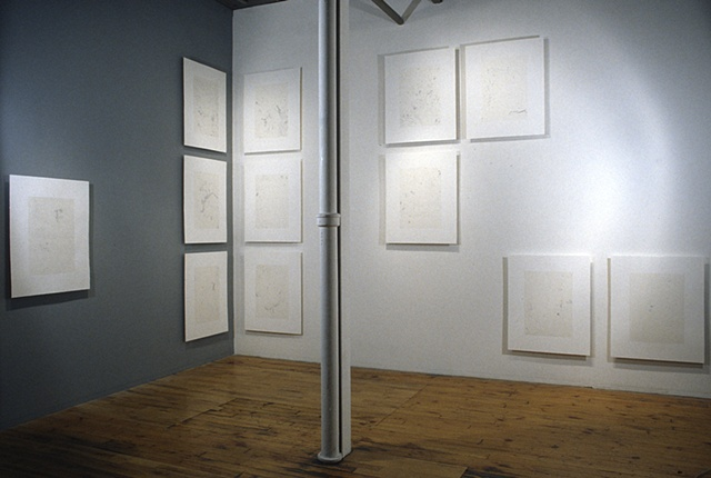 Installation view: 12 Dust Prints (from the Sfumato series)