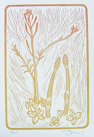 "Linocut print ""Untitled (Botanical)"" by Aijung Kim www.sprouthead.etsy.com"