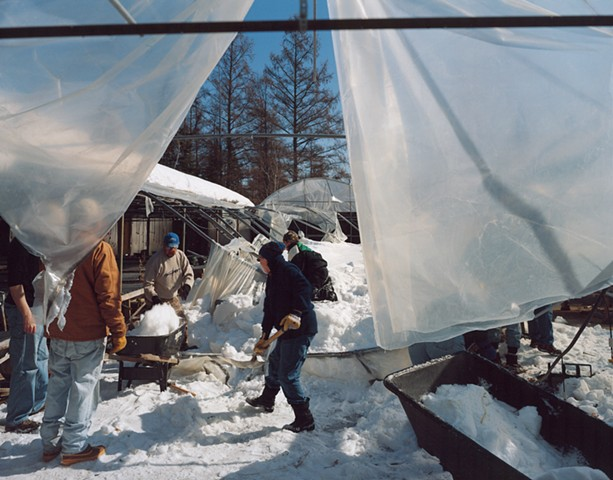 Members of Hope Lutheran Church Helping a Member Whose Greenhouse Roof Collapsed Due to Heavy Snow, Embarrass, Minnesota 2009