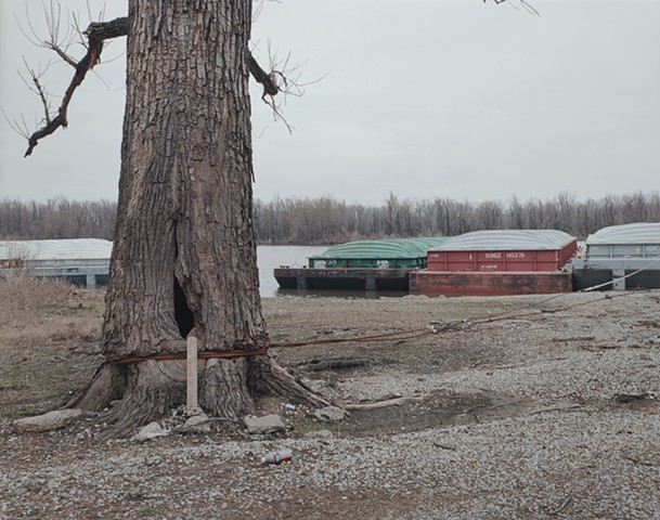 Triangle Boat Club Fishing Access, Pemiscot Co. Missouri 2016