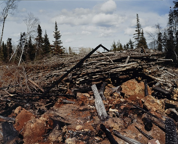 Blowdown Debris, Near Aspen Lake, Gunflint Trail, Superior National Forest 2001