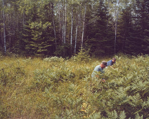 Susie and Don picking blueberries, Aurora, Minnesota  2004