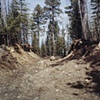Track With Rock, North of Babbitt, Minnesota 2002