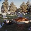 Robert I. Martin, Gravedigger, Magnolia Protestant Cemetery, Magnolia, Harrison County, Iowa 2000