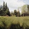 Track near Embarass, Minnesota 2001