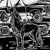 'Coyote and Junkyard'