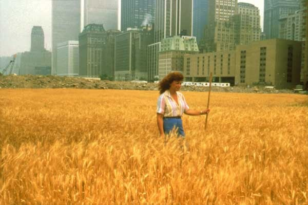 Agnes Denes Wheat Field, NYC