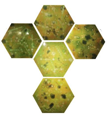 PD Factor, 5 Greens