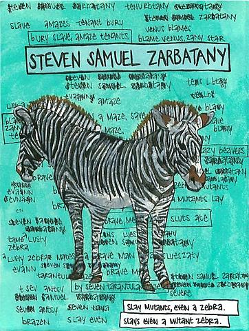 Steven Samuel Zarbatany