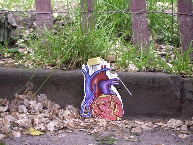 Heart in Washington Square Park