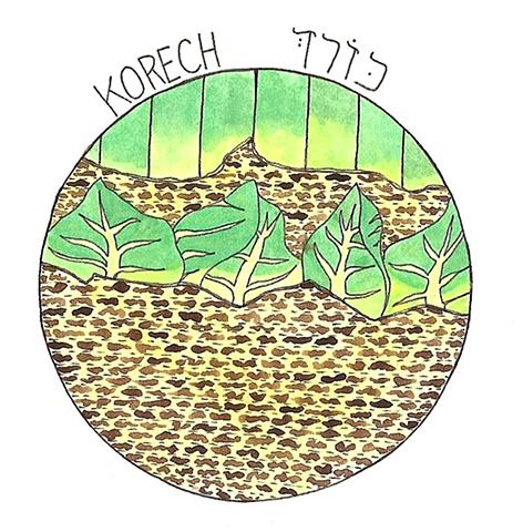 Korech
