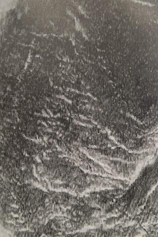 Capsule (detail)