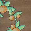 Succulent Cardboard