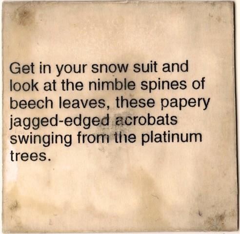 Winter Under Wraps Text 5