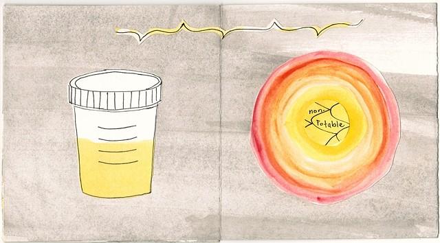 Yellow Detail Urine Sample